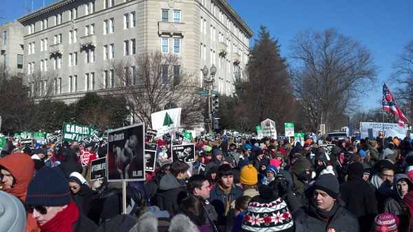 March for life 2014 600 by 450.jpg